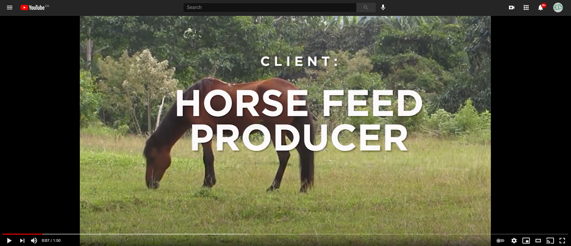 Vortex Roller Gate: Horse Feed Producer
